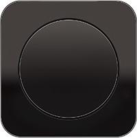Berker R.1, Рамка: черный. Вставка: черный. Стекло