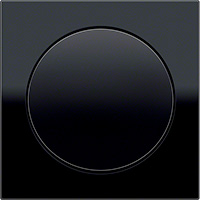 Berker R.8, Рамка: черный. Вставка: черный. Стекло