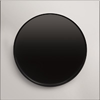 Berker R.3, Рамка: нержавеющая сталь. Вставка: черный