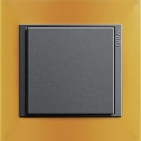 Gira Event Opaque. Цвет рамки: Янтарный; Цвет вставки и клавиши: Антрацит